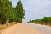 stock photo of oasis  - The oasis effect occurs on the road in a very hot and humid day - JPG