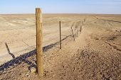 pic of sheep-dog  - Dingoe fence in the Australian Outback - JPG