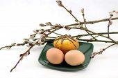 foto of willow  - eggs and cake on a plate and willow - JPG