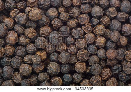 Black Pepper Fruits