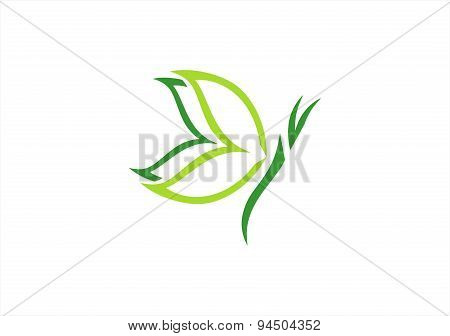 butterfly logo,natural beauty spa concept symbol icon vector design