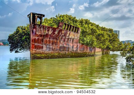 Floating mangrove forest