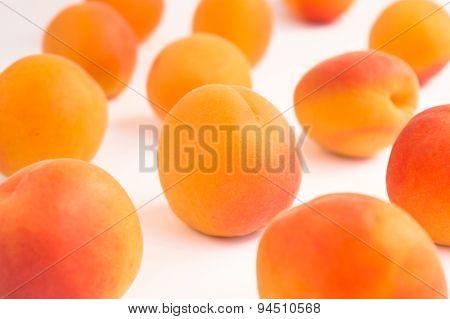 Random Pattern of Apricots