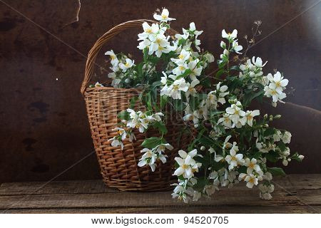 Bouquet From Branches Of A Gentle White Jasmin In A Wattled Basket