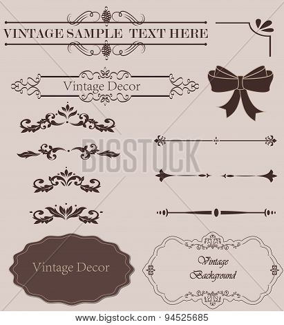 Set of Calligraphic Design Elements and Page Decoration Dividers