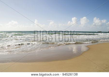 Empty summer sand beach on the sea or ocean