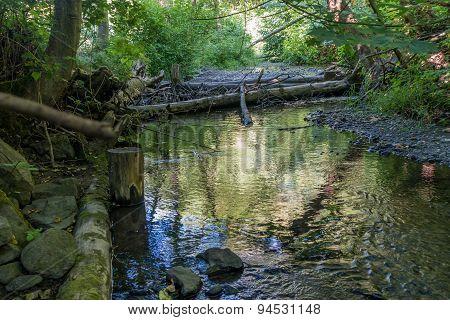 Des Moines Creek