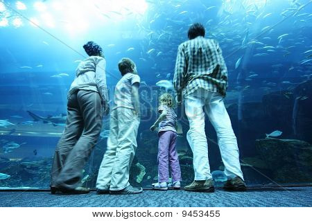 Family With Boy And Girl Standing In Underwater Aquarium Tunnel And Looking On Fishes