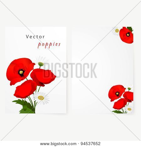 Template card with chamomile and red flowers poppies