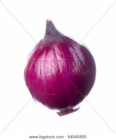 Onion Isolated On A White Background