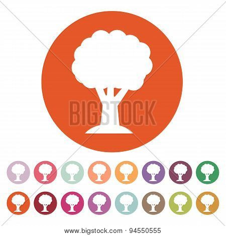 The Tree Icon. Nature Symbol. Flat