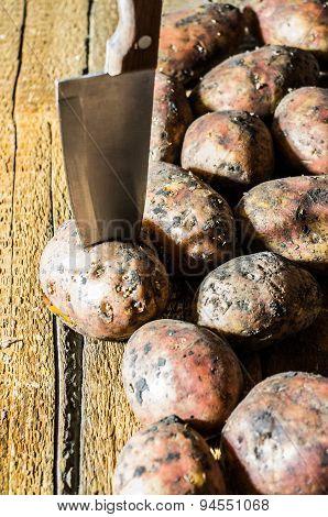 Real Fresh Potatoes