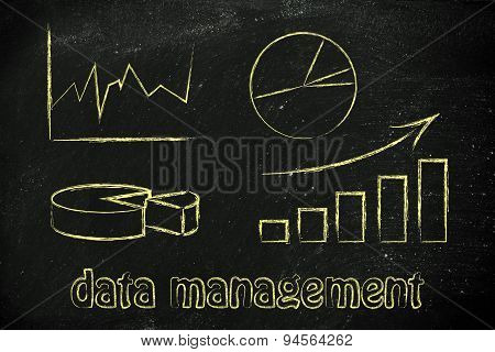 Graphs And Stats: Business Intelligence And Data Management