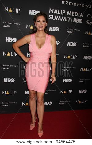 LOS ANGELES - JUN 27:  Alex Meneses at the NALIP 16th Annual Latino Media Awards at the W Hollywood on June 27, 2015 in Los Angeles, CA