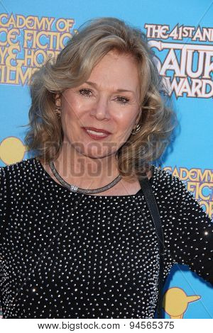 LOS ANGELES - JUN 25:  Kathryn Leigh Scott at the 41st Annual Saturn Awards Arrivals at the The Castaways on June 25, 2015 in Burbank, CA