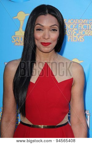 LOS ANGELES - JUN 25:  Tamara Taylor at the 41st Annual Saturn Awards Arrivals at the The Castaways on June 25, 2015 in Burbank, CA