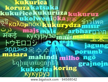 Background concept wordcloud multilanguage international many language illustration of corn glowing light