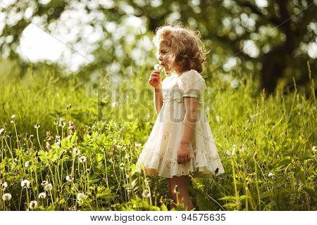 Little Beautiful Girl Blowing A Dandelion