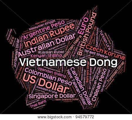 Vietnamese Dong Means Currency Exchange And Broker