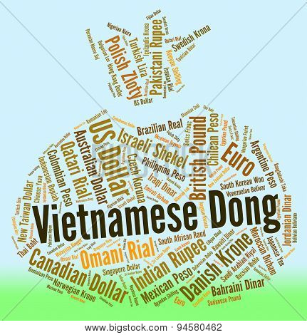 Vietnamese Dong Means Worldwide Trading And Dongs
