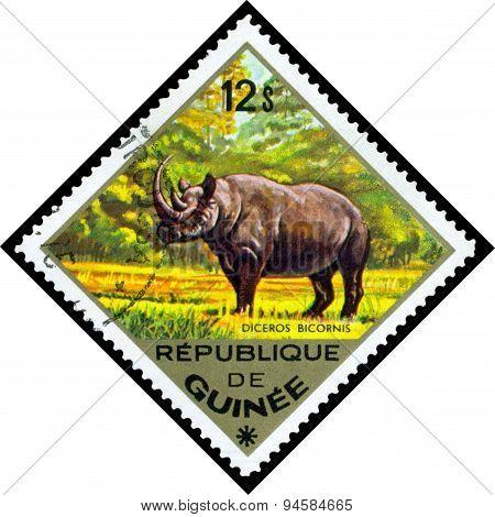 Vintage  Postage Stamp. Diceros Bicornis.