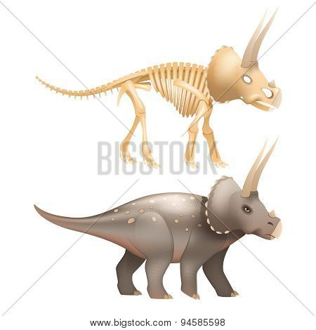 Triceratops dinosaur art with skeleton