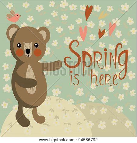 Cute Bear On A Spring Meadow