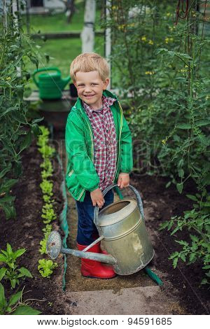 Little boy watering the vegetables in Greenhouse. Garden. Outdoors portrait
