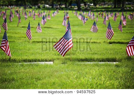 flag on the graves of soldiers on veterans day in a cemetary