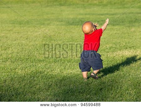 Little Baby Boy Walking In A Field.
