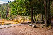 foto of pier a lake  - pier on the Lake in mountain near coniferous forest - JPG