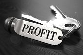 picture of profit  - Keys to Profit  - JPG