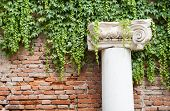 stock photo of vicenza  - White stone column in the external courtyard of the olimpic theater in Vicenza - JPG