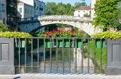 pic of vicenza  - Flowered iron balcony of Saint Paul bridge in Vicenza with a view of Retrone river and Saint Michele bridge in the background - JPG