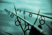 pic of rod  - twin fishing rods on a beautiful lake  - JPG