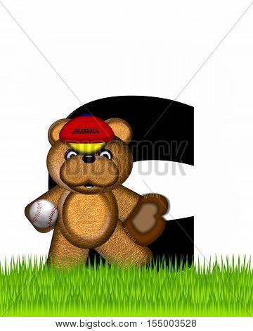 Alphabet Teddy Baseball C