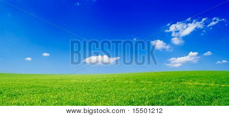 fields and blue sky