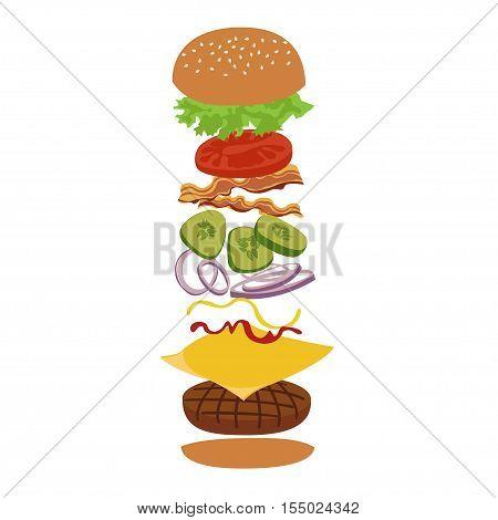 Burger isolated vector infographics illustration. Hamburger and ingredients illustration. Image of burger on white background.