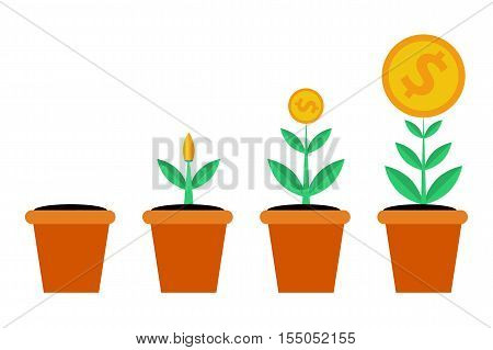Vector isolated web infographic stages of successful business or financial growth. Money tree in pot. Planting, growth and good result