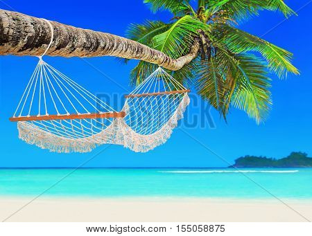 Wooden white mesh hammock on perfect tropical white sandy coconut palm beach Baie Lazare Mahe island Seychelles Indian Ocean