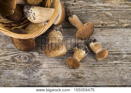 Raw Mushrooms On A Wooden Table.