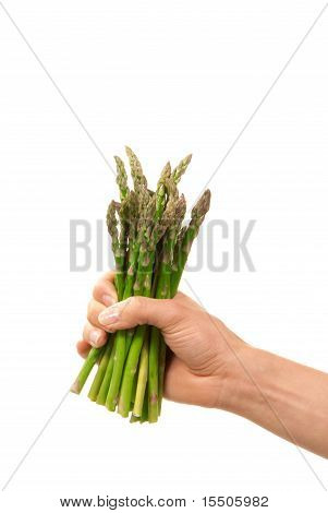 Bunch Of Fresh Green Asparagus In Hand