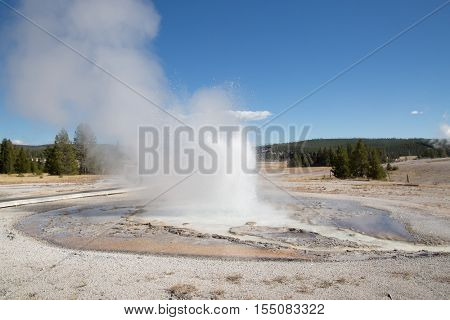 Sawmil geyser eruption in the Yellowstone national park, USA