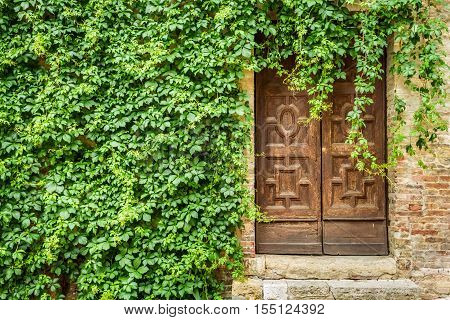 Ancient building with wooden door and ivy