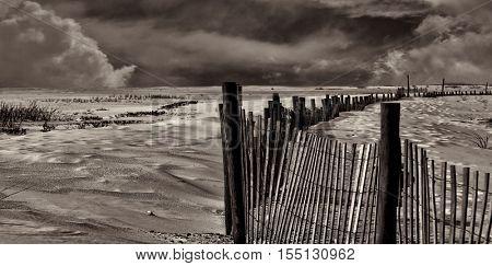 Nice Black and White Image of the coast of Pensacola Florida