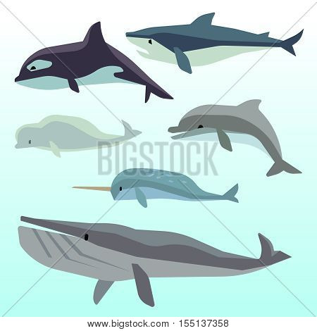Whales and dolphins, marine underwater mammal, ocean animals flat vector set. Sea wildlife and fish cartoon character illustration