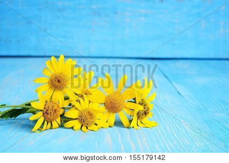 closeup of pile of yellow daisies on wood