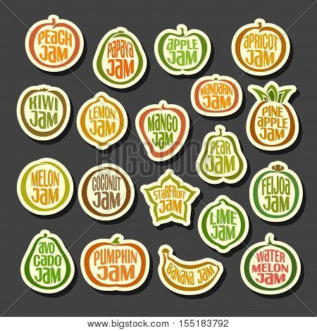 Vector Set colorful Fruits Jam icons: collection set of abstract label peach jam, simple fruit logo or icon of pineapple jams, minimalistic cartoon pictograms isolated on black background.