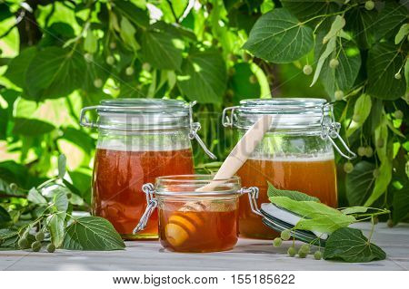 Honey In A Jar On The Background Of Linden Trees