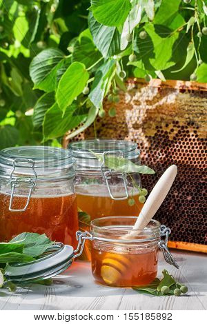 Honey In A Jar And Honeycomb And Linden Tree